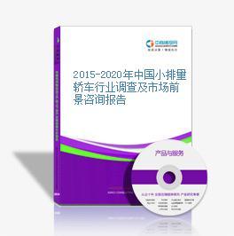 2015-2020年中国小排量轿车行业调查及市场前景咨询报告