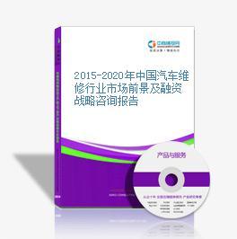2015-2020年中国汽车维修行业市场前景及融资战略咨询报告