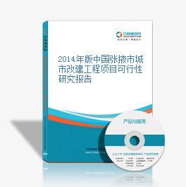 2014年版中国张掖市城市改建工程项目可行性研究报告