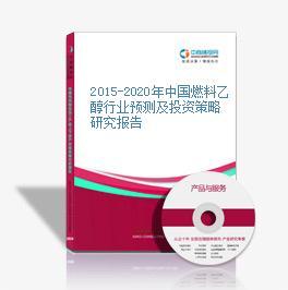 2015-2020年中国燃料乙醇行业预测及投资策略研究报告