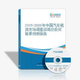2015-2020年中國汽車租賃市場調查咨詢及投資前景預測報告