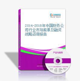 2014-2018年中國財務公司行業市場前景及融資戰略咨詢報告