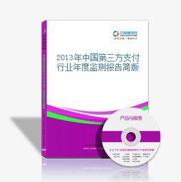 2013年中国第三方支付行业年度监测报告简版