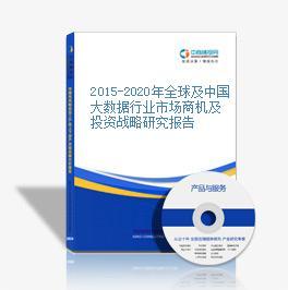 2015-2020年全球及中国大数据行业市场商机及投资战略研究报告