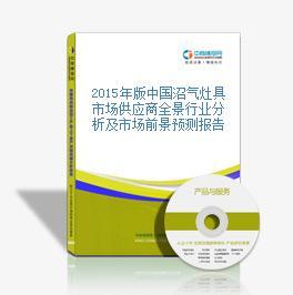 2015年版中國沼氣灶具市場供應商全景行業分析及市場前景預測報告