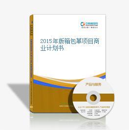 2015年版箱包革项目商业计划书