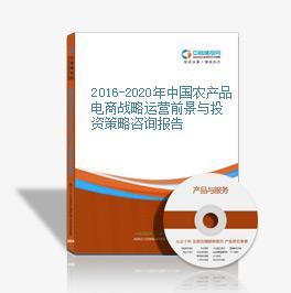 2016-2020年中国农产品电商战略运营前景与投资策略咨询报告