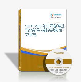 2016-2020年甘肃旅游业市场前景及融资战略研究报告