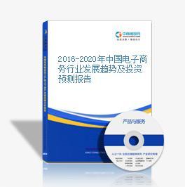2016-2020年中国电子商务行业发展趋势及投资预测报告