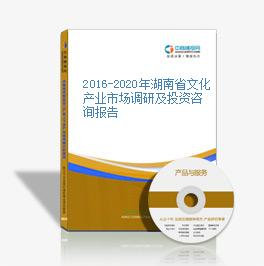 2016-2020年湖南省文化产业市场调研及投资咨询报告