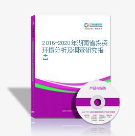 2016-2020年湖南省投资环境分析及调查研究报告