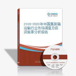 2016-2020年中国集装箱运输行业市场调查及投资前景分析报告