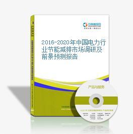 2016-2020年中国电力行业节能减排市场调研及前景预测报告