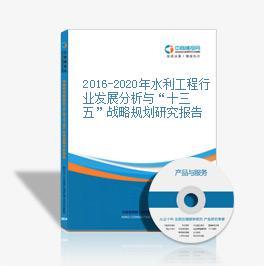 """2016-2020年水利工程行业发展分析与""""十三五""""战略规划研究报告"""