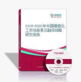 2016-2020年中国精细化工市场前景及融资战略研究报告