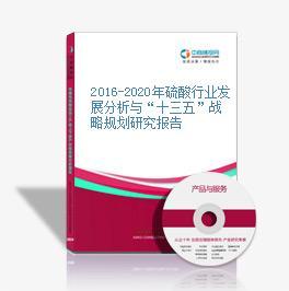 """2016-2020年硫酸行業發展分析與""""十三五""""戰略規劃研究報告"""