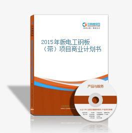 2015年版电工钢板(带)项目商业计划书