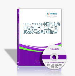 """2016-2020年中國汽車后市場行業""""十三五""""發展趨勢及前景預測報告"""