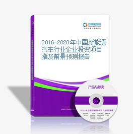 2016-2020年中国新能源汽车行业企业投资项目指及前景预测报告