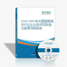 2016-2020年中国智慧城市行业企业投资项目指及前景预测报告