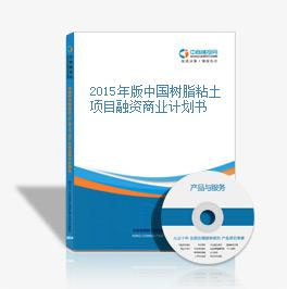 2015年版中国树脂粘土项目融资商业计划书
