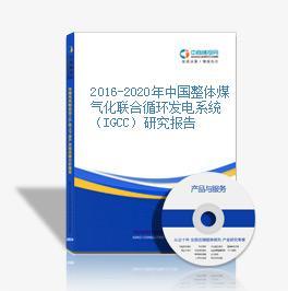 2016-2020年中国整体煤气化联合循环发电系统(IGCC)研究报告