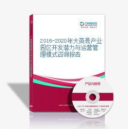 2016-2020年大英縣產業園區開發潛力與運營管理模式咨詢報告