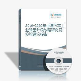2016-2020年中国汽车工业转型升级战略研究及投资建议报告