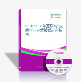 2016-2020年互联网+众筹行业运营模式研究报告