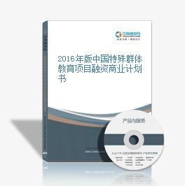 2016年版中国特殊群体教育项目融资商业计划书