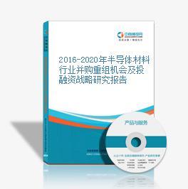 2016-2020年半导体材料行业并购重组机会及投融资战略研究报告