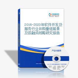 2016-2020年軟件開發及服務行業并購重組前景及投融資戰略研究報告