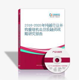 2016-2020年纯碱行业并购重组机会及投融资战略研究报告