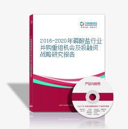 2016-2020年磷酸盐行业并购重组机会及投融资战略研究报告
