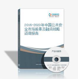 2016-2020年中国公共安全市场前景及融资战略咨询报告