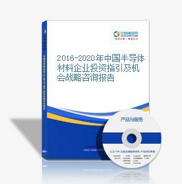 2016-2020年中国半导体材料企业投资指引及机会战略咨询报告