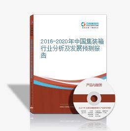 2016-2020年中国集装箱行业分析及发展预测报告