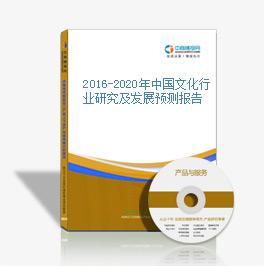 2016-2020年中国文化行业研究及发展预测报告