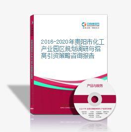2016-2020年貴陽市化工產業園區規劃調研與招商引資策略咨詢報告