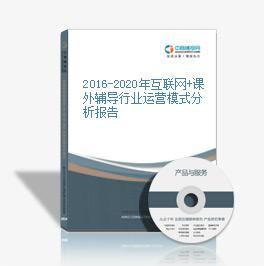 2016-2020年互联网+课外辅导行业运营模式分析报告