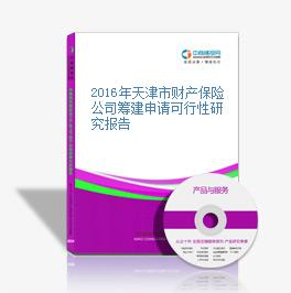 2016年天津市財產保險公司籌建申請可行性研究報告