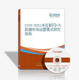 2016-2021年互联网+大数据市场运营模式研究报告