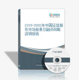 2015-2020年中国征信服务市场前景及融资战略咨询报告