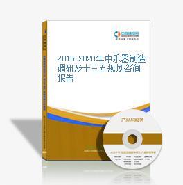 2015-2020年中乐器制造调研及十三五规划咨询报告