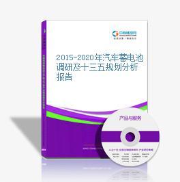 2015-2020年汽车蓄电池调研及十三五规划分析报告