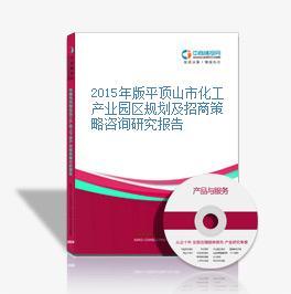 2015年版平顶山市化工产业园区规划及招商策略咨询研究报告