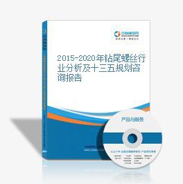 2015-2020年钻尾螺丝行业分析及十三五规划咨询报告