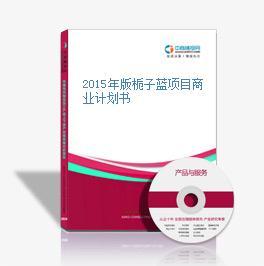 2015年版栀子蓝项目商业计划书