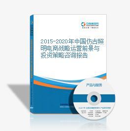 2015-2020年中国仿古照明电商战略运营前景与投资策略咨询报告