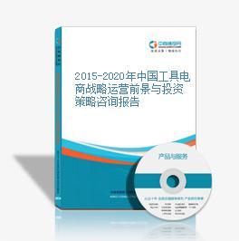 2015-2020年中国工具电商战略运营前景与投资策略咨询报告